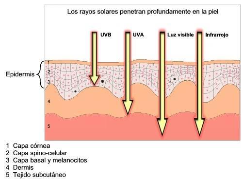 Como afectan los rayos UVA en tu piel