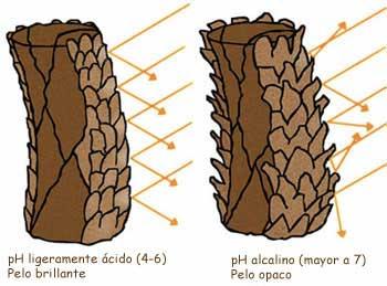 Factores que te hacen perder el brillo del pelo